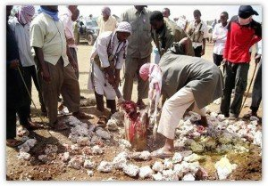 Un couple lapidé par des islamistes au Mali dans Critique 251984_3558563854113_1763093580_n-300x209